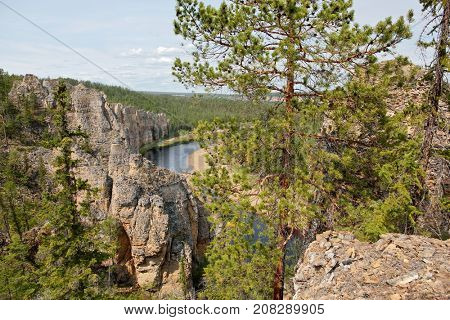 River in taiga forest. Siene - tributary of the Lena river in Yakutia