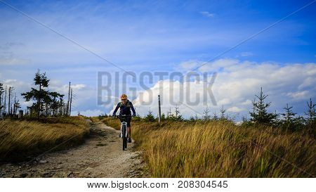 Mountain biking women riding on bike in summer mountains forest landscape. Woman cycling MTB flow trail track. Outdoor sport activity.