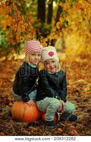 Two Adorable little sisters in autumn park with leaves