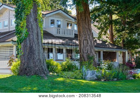 Big old residential house with big tree stems in front