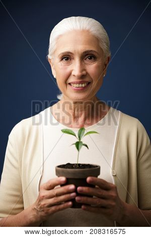 Close-up photo of glad aged woman holding green plant in the spot, looking at camera, over dark blue background
