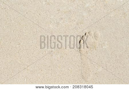Footprint on white sand. Female barefoot print on beach sand. Seashore banner template with text place. Sand beach texture. Sunny beach top view. Seaside sand surface. Bare foot mark on white beach