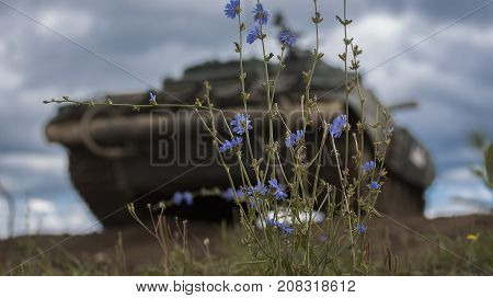 Military equipment. Tank. Thunderous sky. Wildflowers. Blue flowers on the background of tanks. Background.