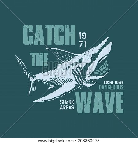 Dangerous shark illustration with typo for t shirt and other uses. Vector illustration.