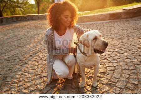 Young smiling african lady in casual clothes iron and hugging dog while sitting in park
