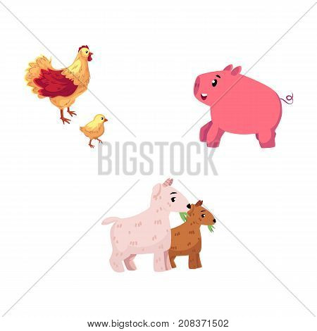 Set of farm animals - chicken, pig, goat, cartoon vector illustration isolated on white background. Funny cartoon style chicken, hen and chick, little pig and two goats