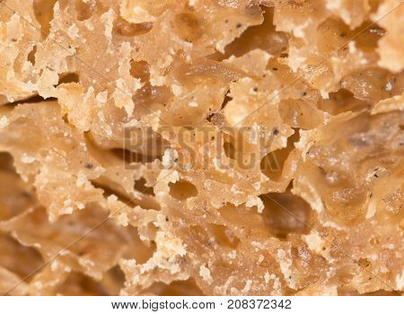 bread as a background. super macro . Photo of abstract background