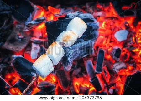 Set of sweet marshmallows roasting over red fire flames. Marshmallow on skewers roasted on charcoals.