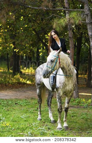 Young brunette beauty girl gently caressing her horse in the park at autumn