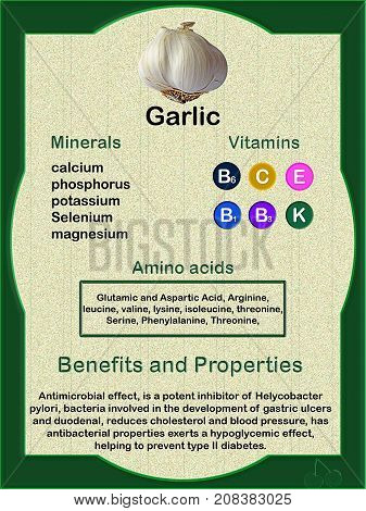 Nutrition Factsheet (vitamins minerals and amino acids) of garlic and its health benefits