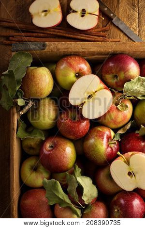 Freshly picked apples in a wooden crate overhead shot