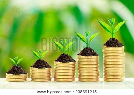 Stack of coins with growth sprout plant with fresh green nature blurred background Investment concept.