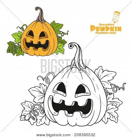 Lantern From Pumpkin Color And Outlined For Coloring Page