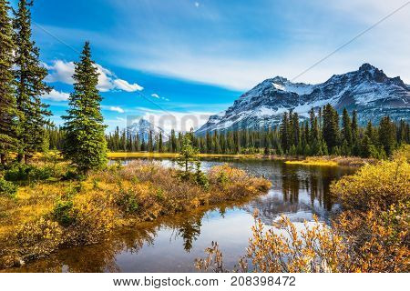 Pine trees reflected in smooth water of the lake. Sunny day. Waterlogged valley in the snowy Rocky Mountains. The concept of ecotourism  and active tourism