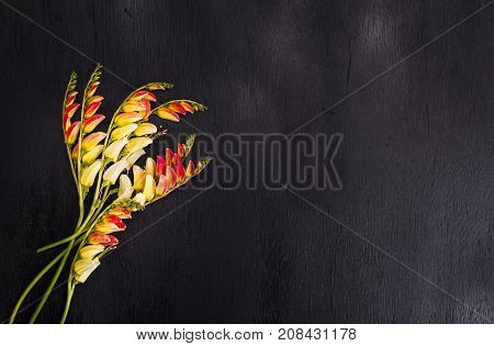 a bouquet of flowers ming blade on black background wooden background empty space on the right