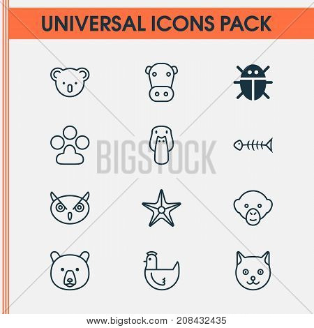 Zoology Icons Set. Collection Of Claw Print, Kine, Hen And Other Elements