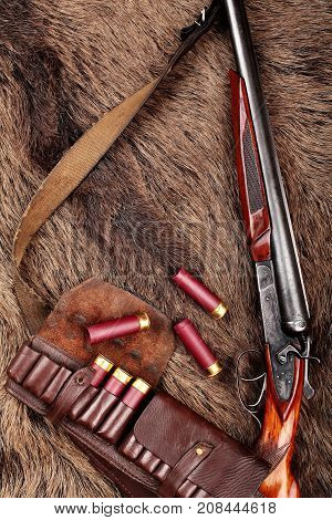 Hunting Double Barrel Vintage Shotgun And Leather Bandolier Ammunition, On The Wild Boar Furs, Close