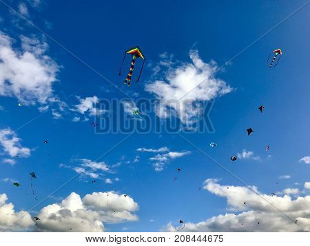Dozens of kites are soaring in the cloudy sky on a windy autumn day
