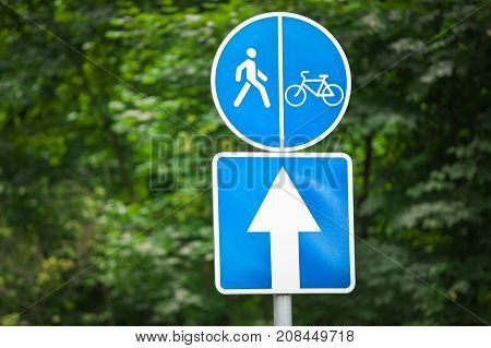 Signs in the park. Road for cyclists. Sports activities.
