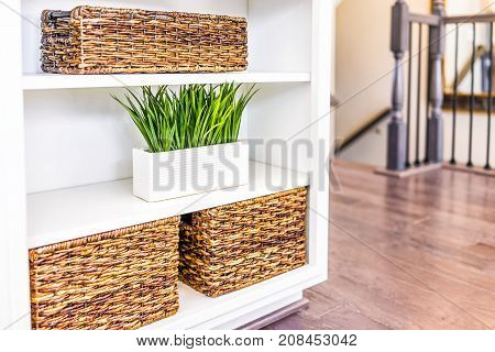 Closeup Of White, Modern, Minimalist Shelves In Kitchen Or Living Room With Woven Baskets And Green