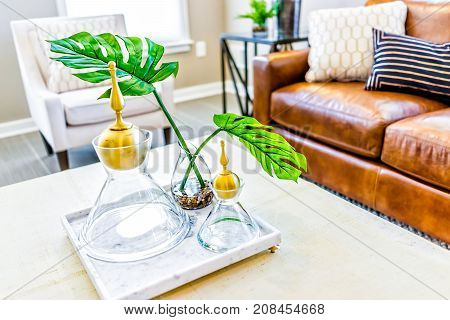 Macro Closeup Of Serving Tray Stand With Empty Glasses And Plant In Staging Model House Or Apartment