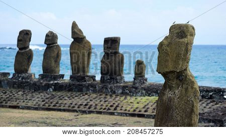 The moai statues on Easter Island in Polynesia