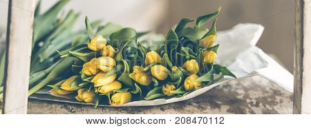 Yellow tulips flowers bouquet on a wooden table. Indoors natural light long wide banner