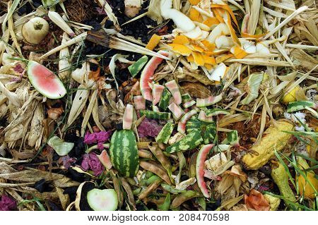 Close up of Vegetable Compost Pile in a Farm Field to Replenish the Ground with Nutrients