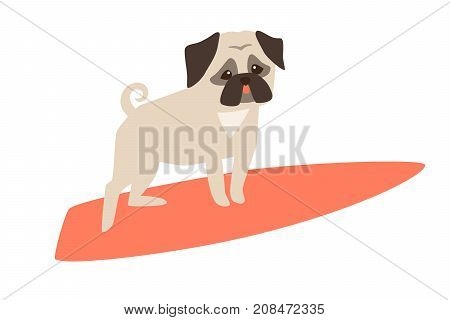 Dog surfers vector cartoon illustrations. Card with funny pug dog. Pug breeds on the pink surfboard. Isolated on white