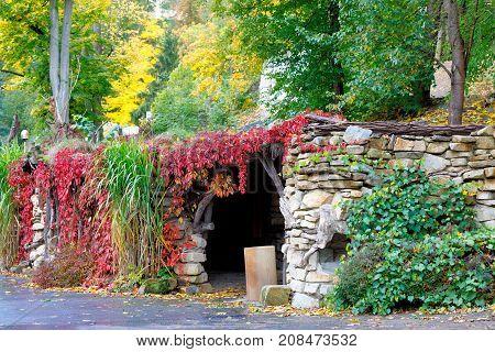 Autumn Colors Composition Outdoor