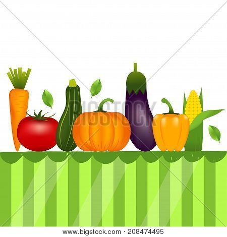 Collection of realistic healthy vegetables such as: carrot tomato pepper eggplant pumpkin marrow zucchini on table. Quality vector illustration about diet eco food.