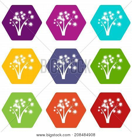 Three spiky palm trees icon set many color hexahedron isolated on white vector illustration