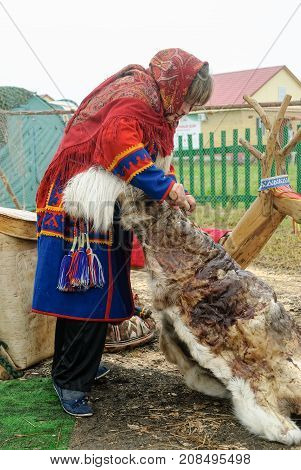 Nenets Woman Processes Cervine Skin