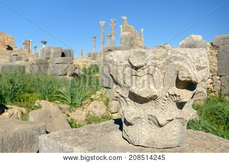 Column Detail In Roman Ruins, Ancient Roman City Of Volubilis. Morocco