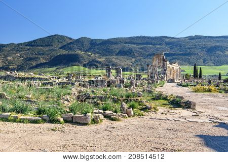 Roman Ruins, Ancient Roman City Of Volubilis. Morocco