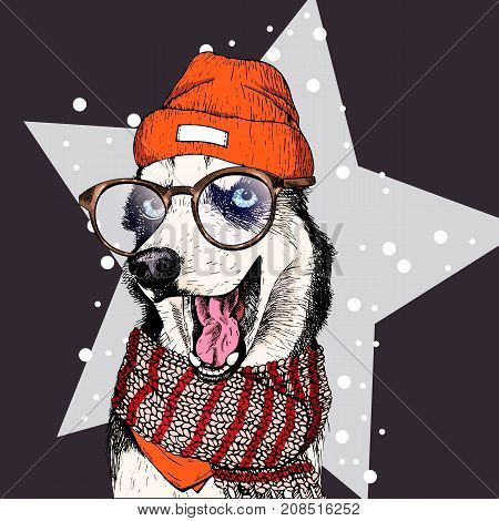 vector portrait of Siberian husky dog wearing beanie, glasses and scarf. Isolated on star and snow. Skecthed colored illustraion. Christmas, Xmas, New year. Party decoration, promotion, greeting card.