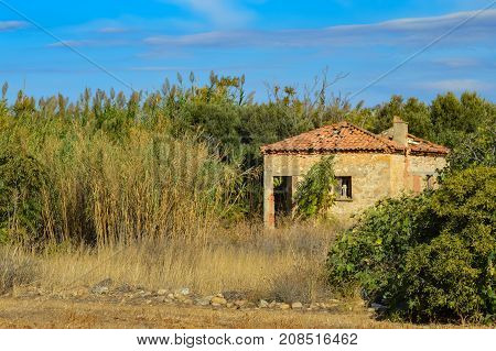 Old house lost in the reeds in the countryside Crete