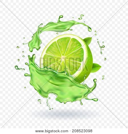 Fresh lime in juice splash Isolated fruit vector illustration.
