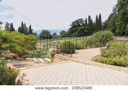 Landscape design of the Nikitsky garden. Lush vegetation of the Nikitsky Botanical Garden in the Crimea.