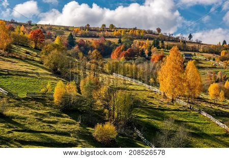 Rural Area On Hillside In Autumn