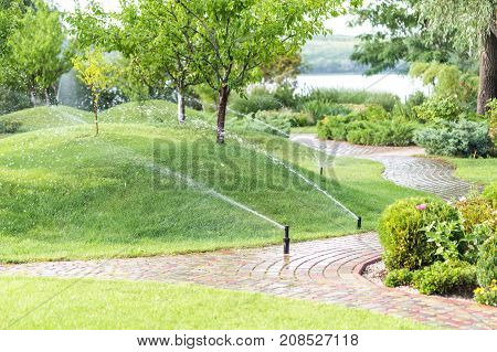 Automatic sprinklers watering modern fruit garden with hills covered by green grass lawn.