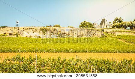 Vineyard Of Saint-emilion, France, Near Bordeaux At The End Of Spring 2017