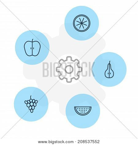 Editable Pack Of Jonagold, Vineyard, Duchess And Other Elements.  Vector Illustration Of 5 Berry Icons.