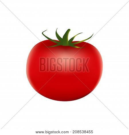 Healthy Vegetables With Tomato, Vitamins And Minerals.