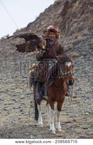 OLGIY, MONGOLIA - SEP 30, 2017: Kazakh Eagle Hunter traditional clothing, while hunting to the hare holding a golden eagle on his arm in desert mountain of Western Mongolia.