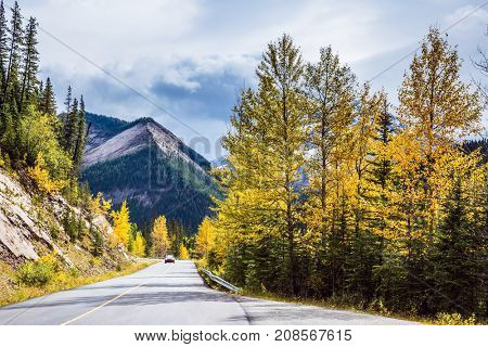Cloudy autumn day in the Canadian Rockies. The asphalt road passes among the snow-capped peaks