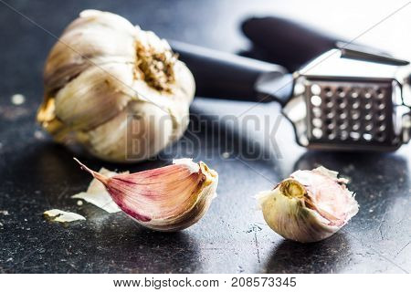 Fresh garlic and garlic presser on kitchen table.