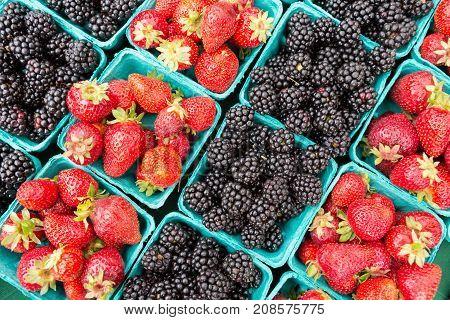 Organically Grown Strawberries, Blackberries For Sale At The Farmers' Market.