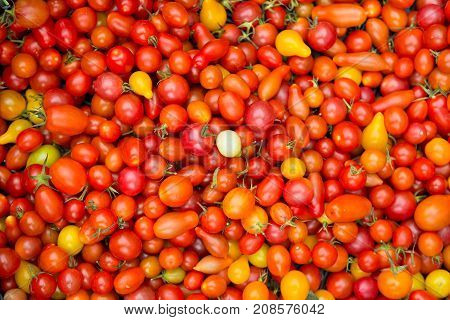 Organic Red Cherry Tomatoes At A Farmer's Market