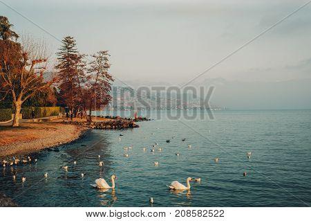 Geneva lake in wintertime image taken in Lausanne Switzerland
